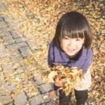 紅葉を関東の穴場「横浜市」「川崎市」「府中市」で堪能してみる。混んでるとこは行きたくない!
