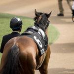 競馬予想を数値化してみる。【俺流】ルールを作って狙い馬を絞る!